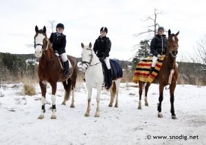rideskolecup høst2012